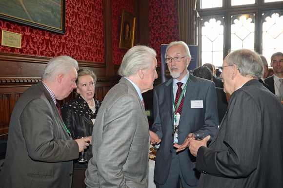 DG146128. DDRf reception at the House of Commons. 15.4.13.