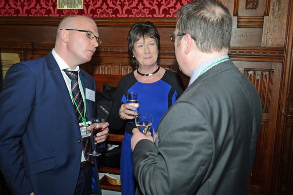 DG146060. DDRf reception at the House of Commons. 15.4.13.