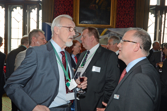 DG146067. DDRf reception at the House of Commons. 15.4.13.