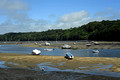 DG279635. The river Fowey at. Golant. 21.8.17